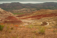 Painted Hills Overlook View from Parking area