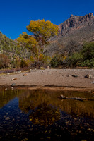 Sabino Canyon - Fall Reflections