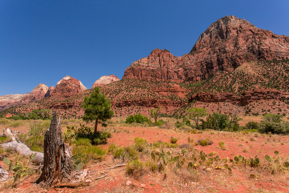 Mountains along the North Fork of the Virgin River