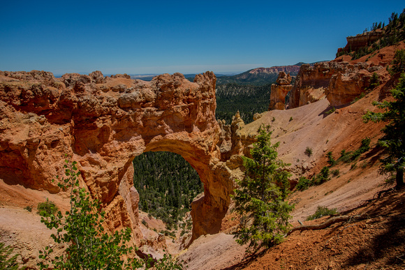 Arch Rock in Bryce Canyon