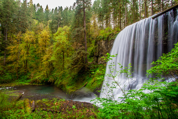 Silver Falls, Middle North Falls