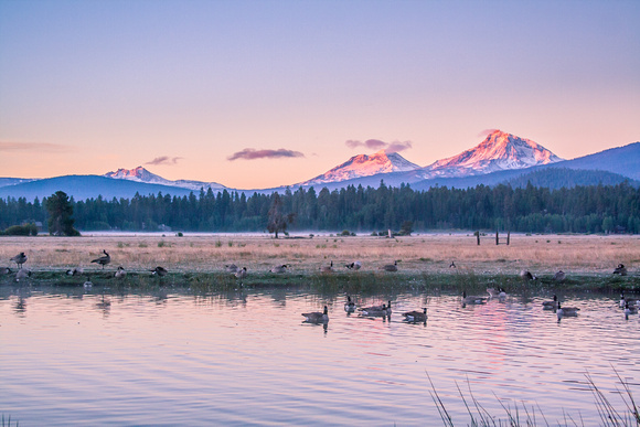 Black Butte Ranch - Morning at the Pond