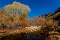 Sabino Canyon - Deep Reflections